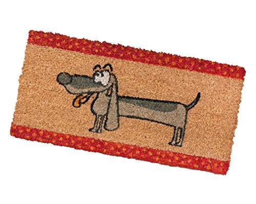 emmevi Felpudo de coco antideslizante 25 x 50 cm alfombra puerta entrada exterior mod. color 25 x 50 (L)