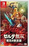 ゼルダ無双 厄災の黙示録 -Switch (【Amazon.co.jp限定】オリジナルパノラマ色紙 同梱)