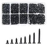 800 piezas Juego de tornillos autorroscantes, acero al carbono, negro, M2, juego de surtido de cabezales cruzados con caja transparente para plástico, madera, metal blando