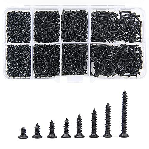 800 pezzi Set di viti autofilettanti da acciaio al carbonio nero M2 Kit assortimento di teste a croce con scatola trasparente per metallo morbido in legno di plastica