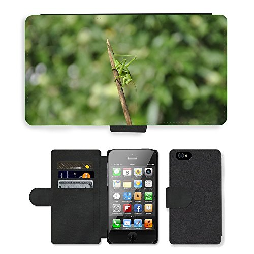 Grand Phone Cases PU LEATHER case coque housse smartphone Flip bag Cover protection // M00140902 Saltamontes Insecto verde viridissima // Apple iPhone 4 4S 4G