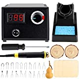 Professional Pyrography Tool Kit 60W Upgraded Wood Burning Kits with 20pcs Pyrography Wire Tips Digital Adjustable Pyrography Machine for Wood and Gourd(Single Pen)