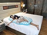 Best Pregnancy Body Pillow - 3-in-1 Hoopa Pregnancy Pillow Blue   Feeding Pillow Review