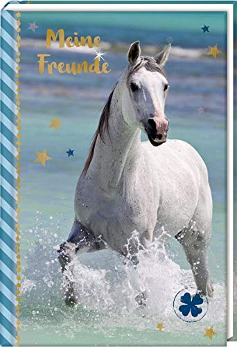 Freundebuch – Pferdefreunde – Meine Freunde: Pferd am Meer