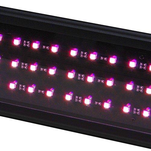 BeamsWork LED Plant Pink Aquarium Light Freshwater RGB Chip Roseate (48')