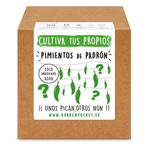 Garden Pocket - Kit Cultivo Pimientos de Padrón: Amazon.es: Jardín