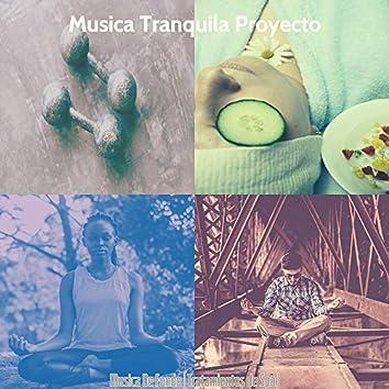 Musica De Fondo (Tratamientos de Spa)