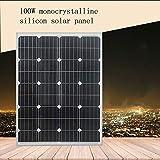 ZSPSHOP Panel Fotovoltaico Solar De Polisilicio De 100W Carga De Batería De 12V Voltios