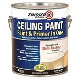 RUST-OLEUM 260967 Ceiling Paint-Gallon