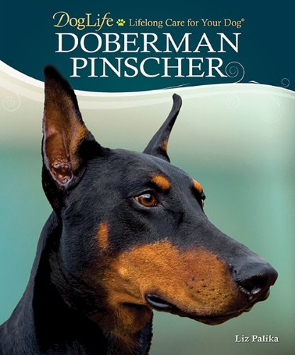 Best Doberman Training Book