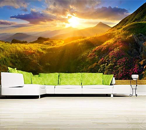 Wxlsl 3D Tapete Sonnenaufgänge Und Sonnenuntergänge Berge Gras Licht Natur Tapeten, Restaurant Bar Wohnzimmer Sofa Tv Wand Schlafzimmer 3D Tapete Wandbild-400cmx280cm