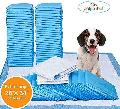 petphabet Ultra-Absorbent XXL Tapis Éducateurs Apprentissage de La propreté pour Chien Tapis Absorbant Chien Lot de 42 71x86cm