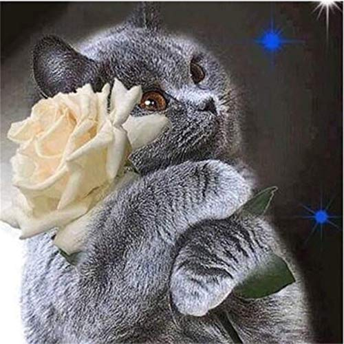 MOL Gray Cat Holding White Rose 5D Diamond Painting 45x60cm/18x24in