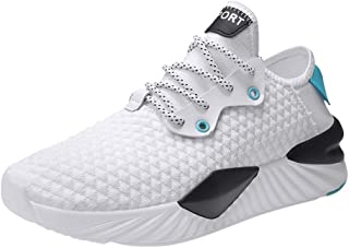 Lailailaily Men's Summer Casual Hollow Mesh Breathable Non-Slip Wear-Resistant Sneakers Shoes