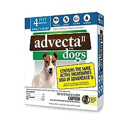 cheap Advecta II Flea Treatment-Canine Flea and Lice Prevention, 4-Month Course