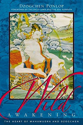 Wild Awakening: The Heart of Mahamudra and Dzogchen