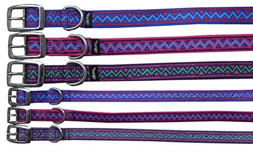 Reitsport Amesbichler Hundehalsband Electra Choice aus Nylon 1,6 cm breit, 23 cm lang, Spark | Halsband für Hunde | Halsband Hund