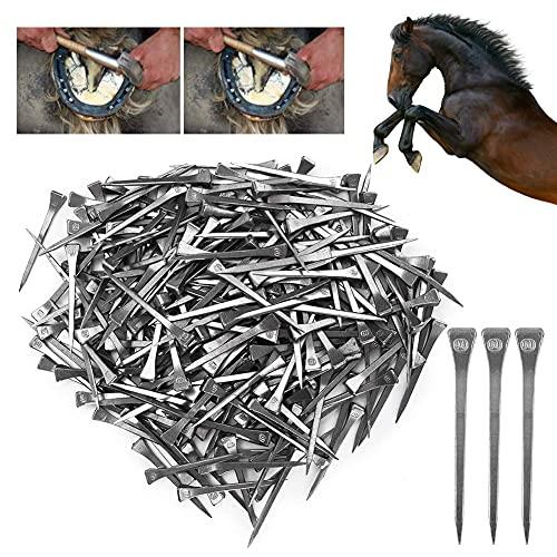 【 】 Strumento a Ferro di Cavallo Resistente all'Usura di Alta qualità, chiodo per Zoccoli Durevole 250PCS, chiodo a Ferro di Cavallo per Strumento a Cavallo