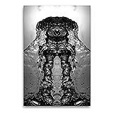 CALVENDO Premium Textil-Leinwand 60 x 90 cm Hoch-Format Hund Harvey, Leinwanddruck von NUPHO Nihat Uysal Photography