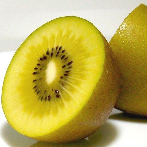 オーガニック サンゴールドキウイ 約3.6kg 25〜33個入り ニュージーランド産 ゼスプリ 有機栽培 キウイ ゴールド