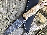 Perkin Cuchillo de Supervivencia, Caza y bushcraft Warfare SK500