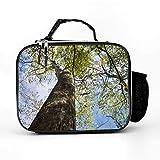 Bolsa isotérmica azul cielo, luz solar, árbol verde, bolsa para el almuerzo, bolsa de pícnic, bolsa térmica a prueba de fugas, bolsa de almuerzo aislada para trabajo, color blanco, talla única