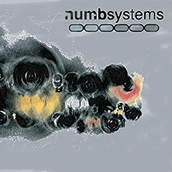 Numbsystems