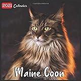Maine Coon 2021 Calendar: Official Maine Coon Cat Breed Wall Calendar, 18 months