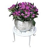 Chrty Soporte de metal para plantas y plantas, soporte para macetas de pie, de acero de alta calidad, robusto y duradero, para salón, balcón, interior y escritorio