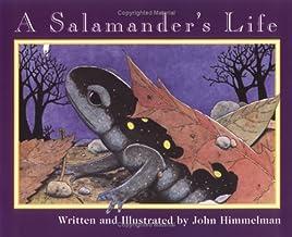 A Salamander's Life (Nature Upclose)