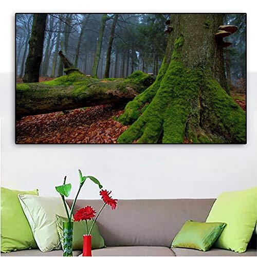 YHZSML Poster Wandkunst Leinwand Malerei Wald Baum Natur Landschaft Wandbilder Für Wohnzimmer Bilder Wohnkultur Ungerahmt B 50x90 cm