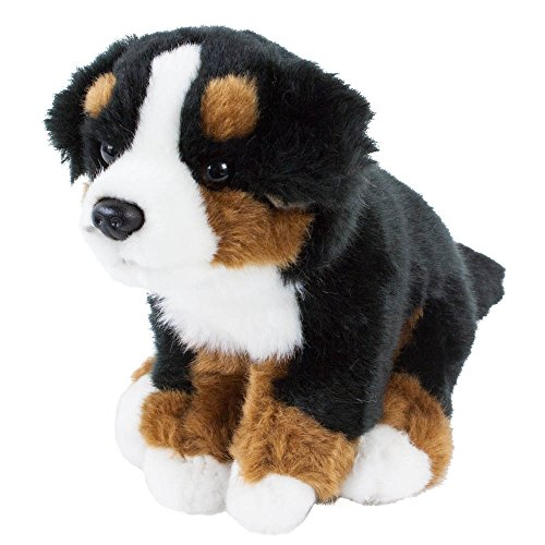 Teddys Rothenburg Kuscheltier Berner Sennenhund Benni 22 cm sitzend braun/schwarz/weiß Plüschbernersennen Hund Plüschhund