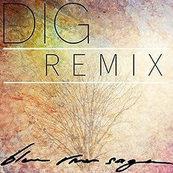 Dig (Remix)