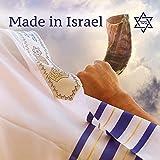 Immagine 1 world of judaica corno daturale