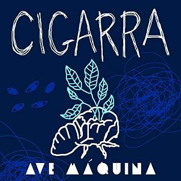 Cigarra (Quarentena Session) [Ao Vivo]