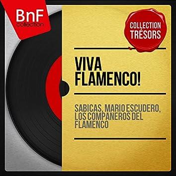 Viva Flamenco! (Mono Version)