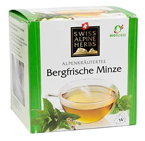 Bio Tee Bergfrische Minze 6x 14 Pyramidenbeutel