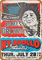 BALTER James Brown at The Apollo in Harlem Novelty Retro Vintage Wall TinRetro Sign Wall TinQuote Art Poster for Home Café Bar Pub Decorations 20 x 30 cm