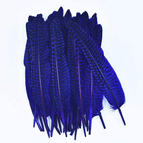 Polka Dot Guinea Hen Feathers for Fashionable Crafts Pheasant Inventory cleanup selling sale 15~20cm F 6-8