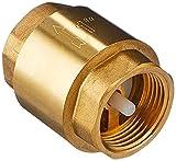 Gardena Messing-Zwischenventil: Rückschlagventil aus Vollmessing, 33.3 mm (G 1 Zoll)-Gewinde, z.B. zum Anschluss an Pumpen (7231-20)
