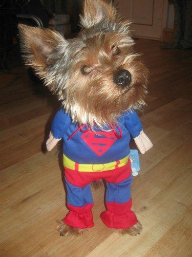 Better Dealz Déguisement Superman pour chien chat ou chiot