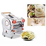 DBSCD Máquina eléctrica Multifuncional para Hacer Pasta Pasta prensadora de Masa Fideos automáticos compactos Dumplings Chinos Wonton Maker, Moldes para moldear para el hogar Restauración
