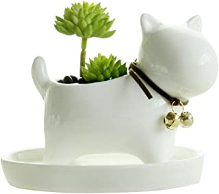 GeLive Dog Succulent Planter with Tray Saucer White Mini Ceramic Plant Flower Pot Animal Decor (White Dog)