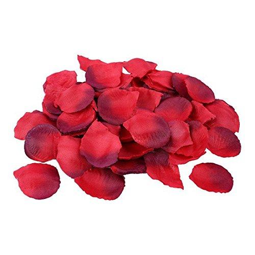 Schramm 500 Stück Rosenblätter Rosenblüten Bordeaux Rosen Blätter Blüten Kunstblumen...