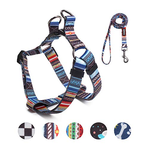 QQPETS Dog Harness Leash Set, Adjustable Heavy Duty No Pull Halter Harnesses for Small Breed Dogs, Back Clip, Anti-Twist, Perfect for Walking (S(14