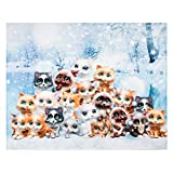 Cat Throw Blanket, Adorable Extra-Large Kitty Cat Blanket for Adults, Kids, Boys, Girls, and Kittens, Fleece Cat Blanket (50in x 60in) Warm, Cozy, and Plush Throw for Bed, Couch, and Sofa