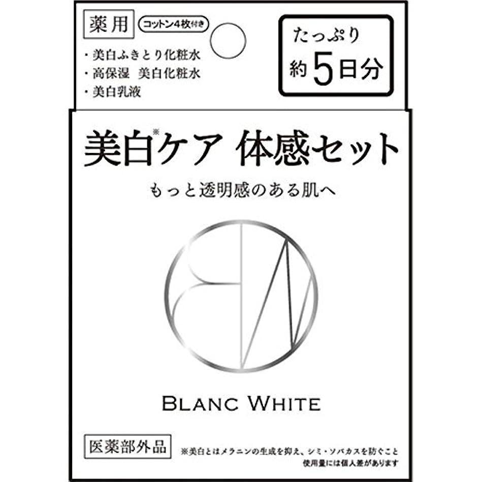 アーティファクト絶えずウェイターブランホワイト トライアルセット 3種混合セット (医薬部外品)