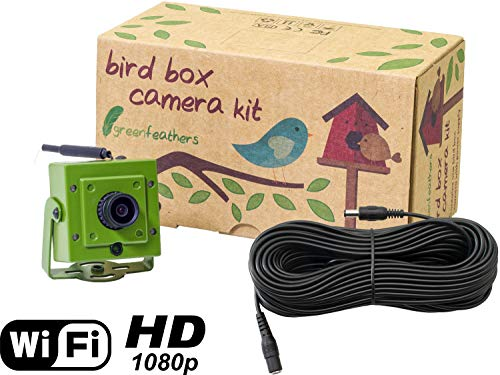 Green Feathers Wildlife Wi-Fi Bird Box Full HD 1080p Camera with IR (Night Vision), MicroSD Recording, Includes 20m Power Extension Cable