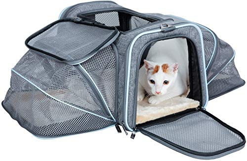 Petsfit Cat Carrier Expandable Dog Carrier for Medium Dogs, Expandable Pet Carrier Most Airline Approved, Two Side Expasion, Easy Carry on Luggage with Fleece Mat (Grey and Blue Trim) 18'x11'x11'