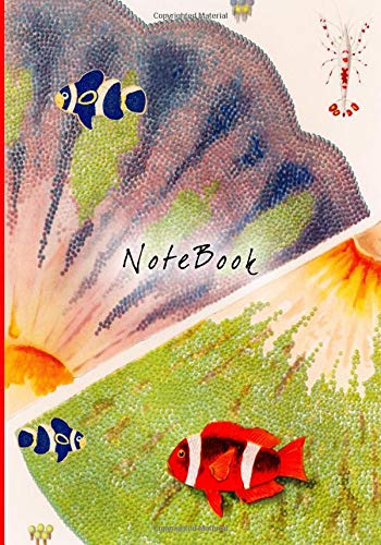 BARRIER REEF COMPOSITION NOTEBOOK 7 IN. X 10 IN. 50 SHEETS (100 PAGES) OF WIDE RULED LINED BLANK PAPER